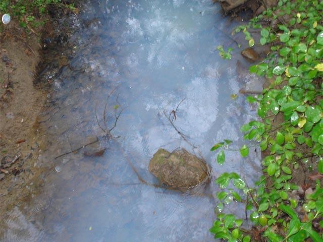 Sewage In Creek