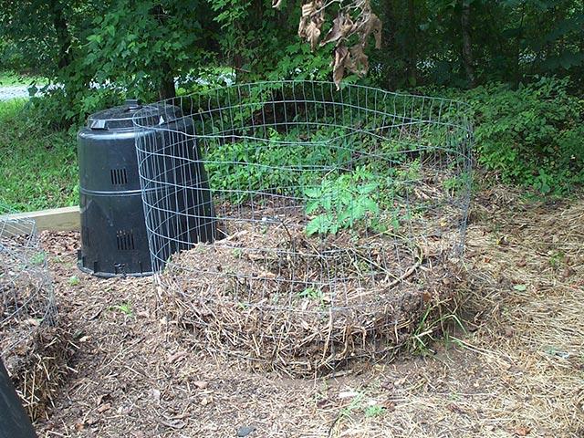 Use a compost bin
